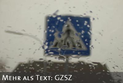 Zebrastreifenverkehrsschild im Regen