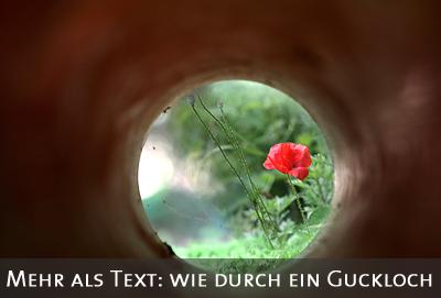 Blume durch R�hre fotografiert